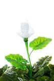 O conceito da energia, enterra a planta de ampola amigável, no branco Fotografia de Stock