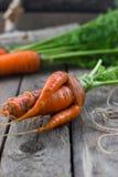 O conceito de cenouras saudáveis comer Imagens de Stock
