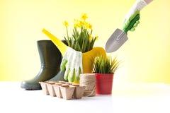 O conceito de jardinagem com uma mola molhando da pessoa floresce Fotografia de Stock Royalty Free