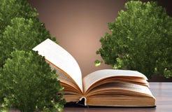 O conceito de um livro ou de uma árvore de conhecimento com carvalho foto de stock