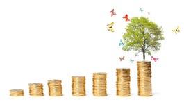 O conceito de um negócio bem sucedido Fotos de Stock Royalty Free