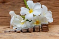 O conceito do dinheiro de salvamento no assoalho de madeira velho fotos de stock royalty free