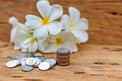 O conceito do dinheiro de salvamento no assoalho de madeira velho imagem de stock