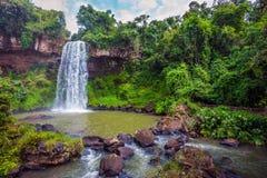 O conceito do turismo ecológico e exótico Imagem de Stock