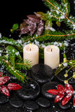 O conceito dos termas do inverno do vermelho sae com as gotas, neve, sutiã sempre-verde Imagens de Stock