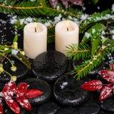 O conceito dos termas do inverno do vermelho sae com as gotas, neve, sutiã sempre-verde Foto de Stock Royalty Free