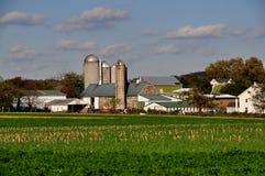 O Condado de Lancaster, PA: Exploração agrícola de Amish fotografia de stock royalty free