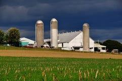 O Condado de Lancaster, PA: Exploração agrícola de Amish com silos imagens de stock