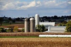 O Condado de Lancaster, PA: Exploração agrícola e campos de Amish foto de stock royalty free