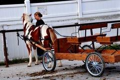 O Condado de Lancaster, PA: Menina de Amish com Pony Cart fotografia de stock royalty free