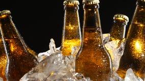O condensado flui abaixo do vidro marrom das garrafas da cerveja Fundo preto Fim acima video estoque