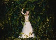 O condessa bonito imagens de stock royalty free