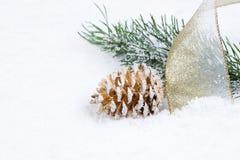 O cone dourado do pinho com fita e o abeto ramificam no sno fotos de stock