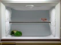 O congelador precisa de degelar Fotografia de Stock
