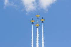 O conluio acrobático aplana RUS do ALCA L-159 Aero no ar durante o evento desportivo da aviação Foto de Stock