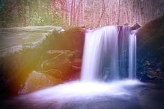 O conto de fadas bonito da fantasia gosta da cachoeira em Forest Woods mágico profundo Fotografia de Stock Royalty Free