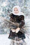 O conto do inverno Imagens de Stock Royalty Free