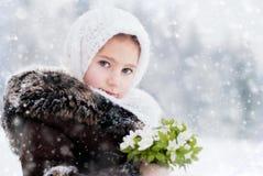 O conto do inverno Imagens de Stock