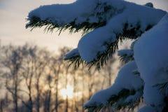 O conto do inverno, um milagre de Rússia fotos de stock