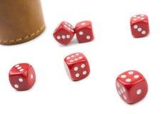 O copo de dados de Brown e seis vermelhos cortam em uma caixa branca Imagem de Stock Royalty Free