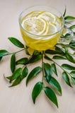 O copo de vidro do chá do gengibre com limão serviu em volta das flores do ruscus das folhas do verde do quadro em uma parede rús Imagens de Stock