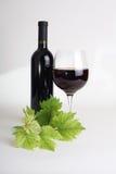 O copo de vinho, garrafa do vinho, uvas folheia fotografia de stock
