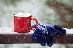 O copo e as luvas vermelhos em uma ponte da neve em um inverno estacionam Imagem de Stock