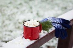 O copo e as luvas vermelhos em uma ponte da neve em um inverno estacionam Imagens de Stock