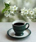 O copo verde do café preto do café e um abricó de florescência ramificam no jardim Fotografia de Stock