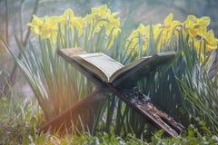 O Cor?o santamente - livro sagrado isl?mico fotos de stock