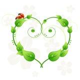 O coração, as folhas e as joaninha abstratos verdes amam Fotos de Stock Royalty Free