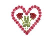 O coração do amor com levantou-se Fotografia de Stock Royalty Free