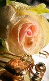 O coração do dia do Valentim e levantou-se Imagem de Stock