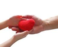 O coração na palma no fundo branco isolado Fotografia de Stock Royalty Free