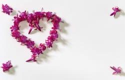 O coração, o coração das flores, celebração, amor Imagens de Stock Royalty Free