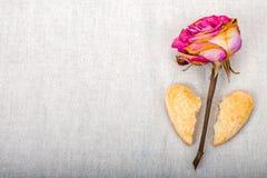 O coração quebrado da forma das cookies e secado aumentou Foto de Stock
