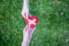 O coração vermelho nas mãos da mulher e mãos as duas dos homens são restaurados Significa as mãos amiga nas épocas difíceis, impo imagens de stock