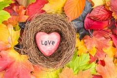 O coração vermelho no ninho nas folhas de bordo misturou o fundo das cores da queda Foto de Stock Royalty Free