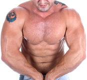 O corpo masculino perfeito Imagens de Stock Royalty Free