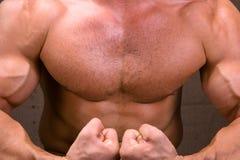 O corpo masculino perfeito Imagem de Stock Royalty Free