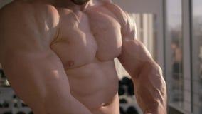 O corpo muscular do halterofilista, indivíduo dos esportes considera o resultado do treinamento da força no músculo de construção filme