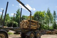 O corte da carga do guindaste entra o reboque nas horas de verão Fotografia de Stock Royalty Free