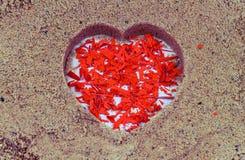 O corte vermelho do papel coração-deu forma sobre em um fundo da areia imagens de stock