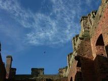 O corvo voa sobre a ruína Fotos de Stock