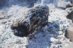 O coto de madeira inoperante seco no firepit imagem de stock