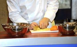 O cozinheiro Imagem de Stock Royalty Free