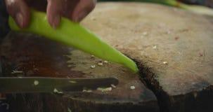 O cozinheiro chefe corta a pimenta de pimentão verde Corte da pimenta de pimentão verde video estoque