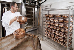 O cozinheiro chefe da pastelaria, leva embora o panettone imagens de stock