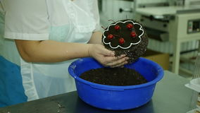 O cozinheiro chefe de pastelaria decora pedaços de chocolate de um bolo filme