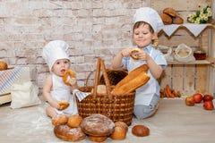 O cozinheiro chefe novo Fotos de Stock Royalty Free